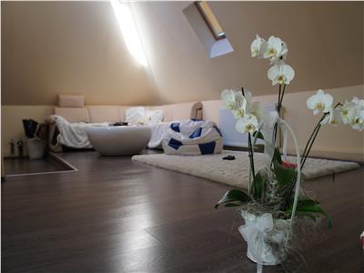 Pensiune 526 mp de vanzare in Sibiu zona Parcul Sub Arini